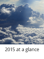 2015 at a glance thumbnail