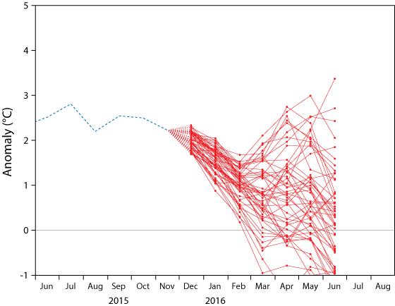 ECMWF NINO1+2 forecast plume 1 Dec 2015