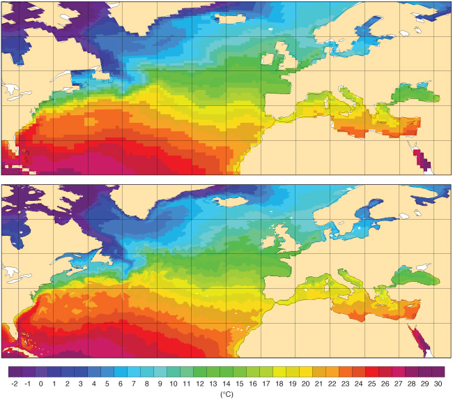 Sea-surface temperature charts IFS Cycles 41r2 and 43r1