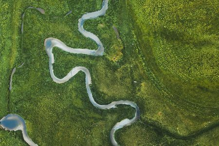River in green lands