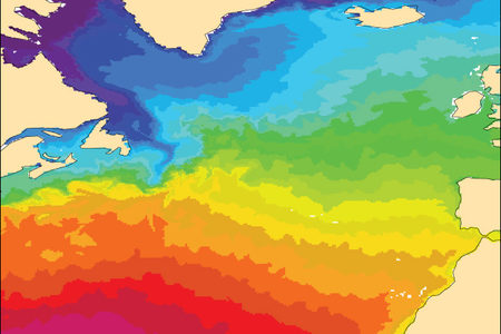 Sea-surface temperature chart IFS Cycle 43r1