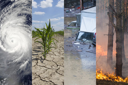 Four types of weather-related hazard